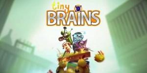 releases12_tinybrains