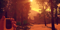 releases0209firewatch